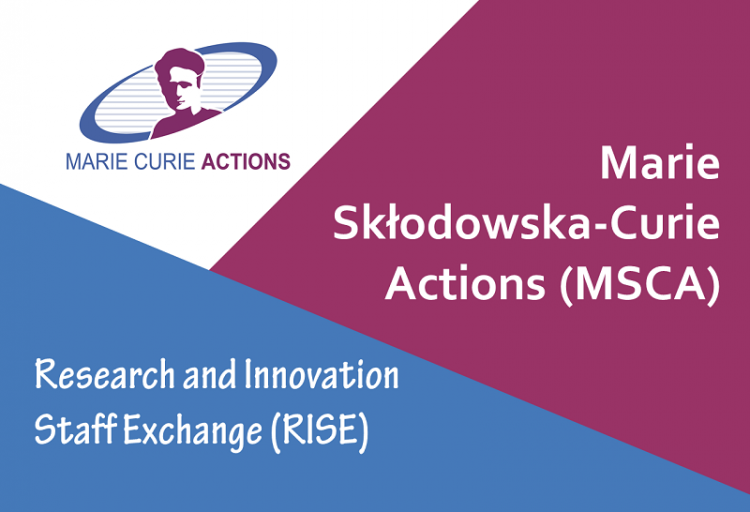 MSCA-RISE Project